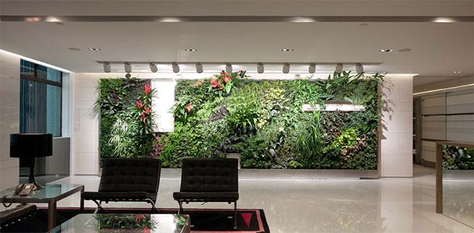 kancelarija-biljke
